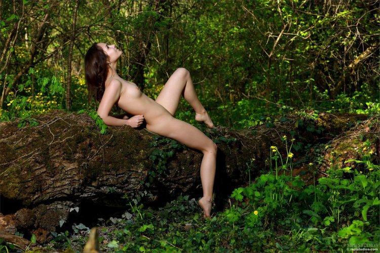 Фото в лесу эро